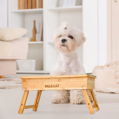 This elevated dog feeder is the perfect height for any dog or cat.